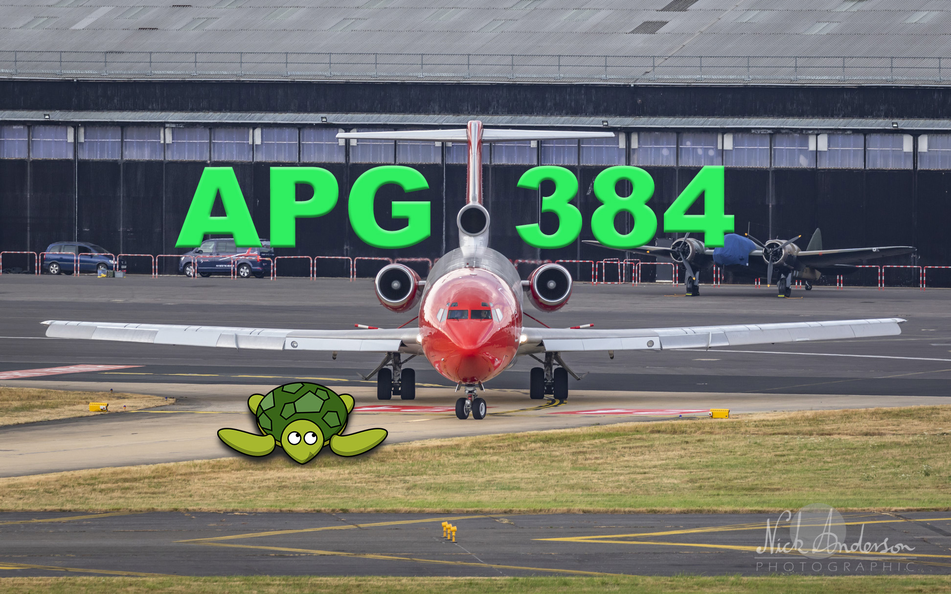 APG 384 – Turtle on the Tarmac